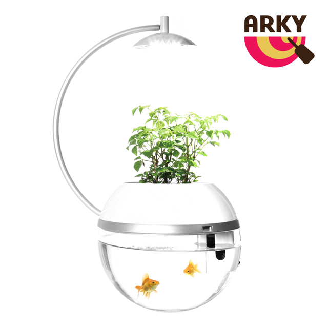 【ARKY】香草與魚Herb & Fish 2016